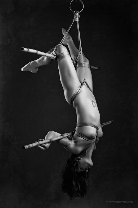 http://amateurhomeporn.net/wp-content/uploads/2012/11/photo-Bondage-Other-Erotic-Stylish-922901465.jpg