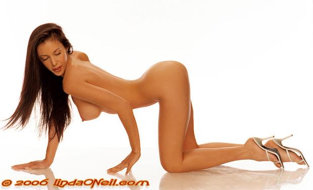 ; Ass Babe Big Tits Brunette
